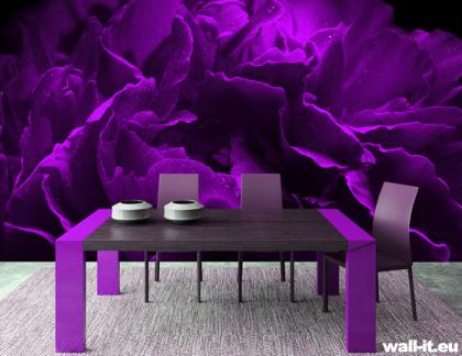 fioletowa fototapeta