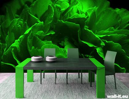 zielona fototapeta aranzacje