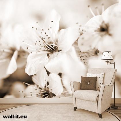 fototapeta kwiaty sepia