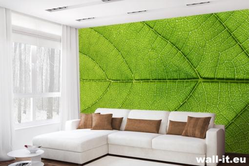 zielona-fototapeta
